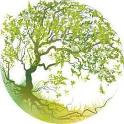 Logo-arbre-de-vie