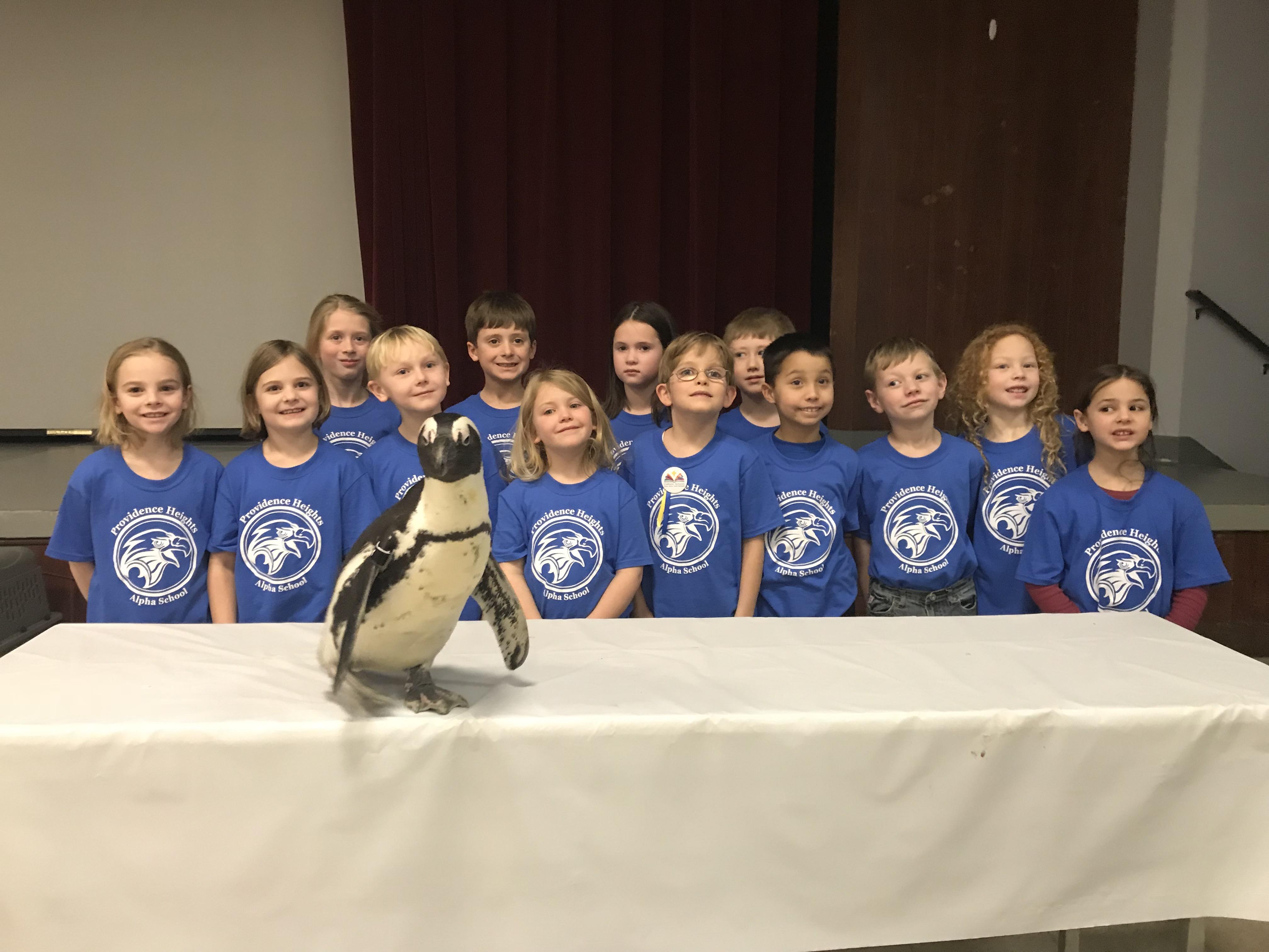 1st grade penguin picture