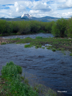 Baldy Mountain & Grasshopper Creek