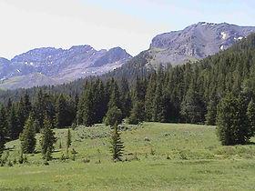 Upper Nicholia 2.jpg