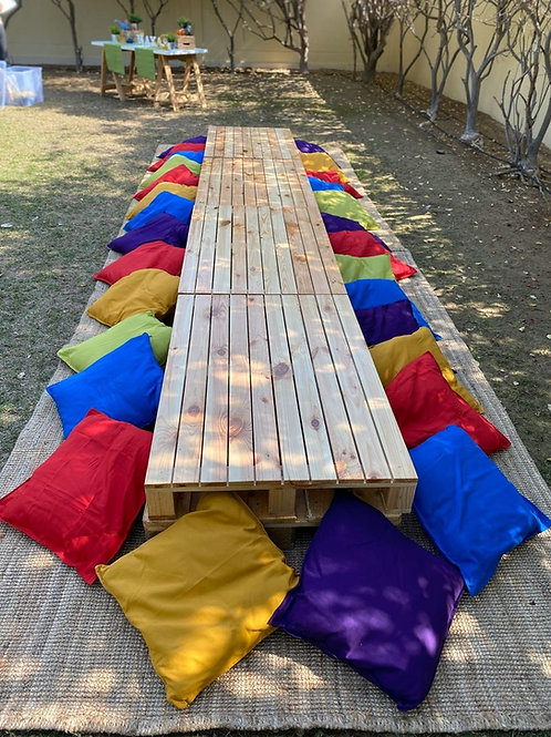 Pallet Tables, Cushion and Rug Set Up