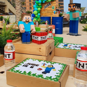Minecraft Inspired Party