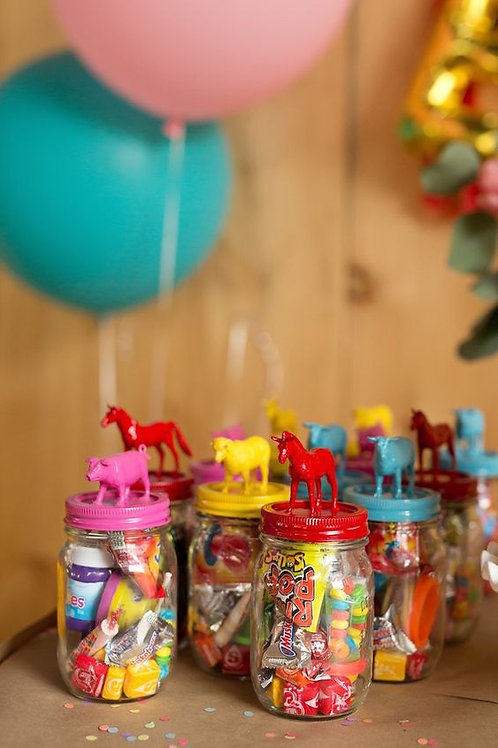 Animal/Dino Sweet Jar