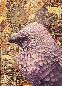 thumbnail_apostle bird.jpg