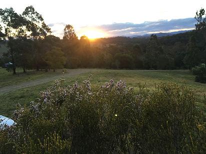 Golden Sunsets.JPG
