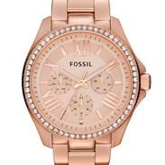 Fossil-Cecile-AM4483-Horloge-Dames-Edels
