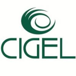 cigel