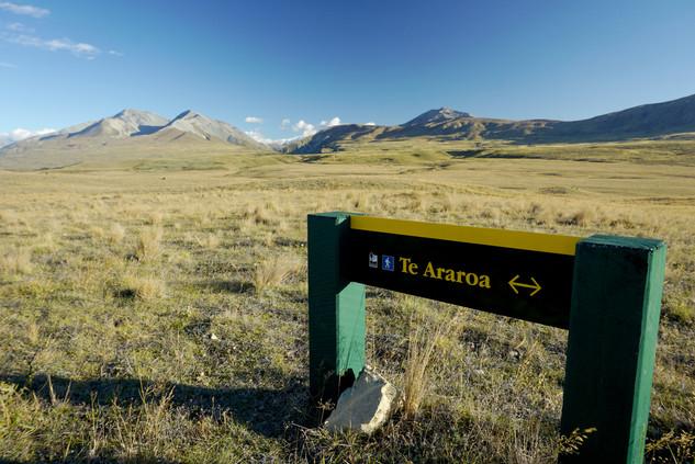 Te Araroa Sign, New Zealand