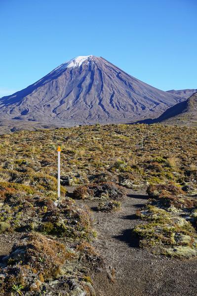 Trail to Mt Ngauruhoe (MT Doom)