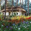 ukrainian village.jpg