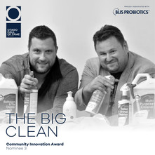 THE BIG CLEAN