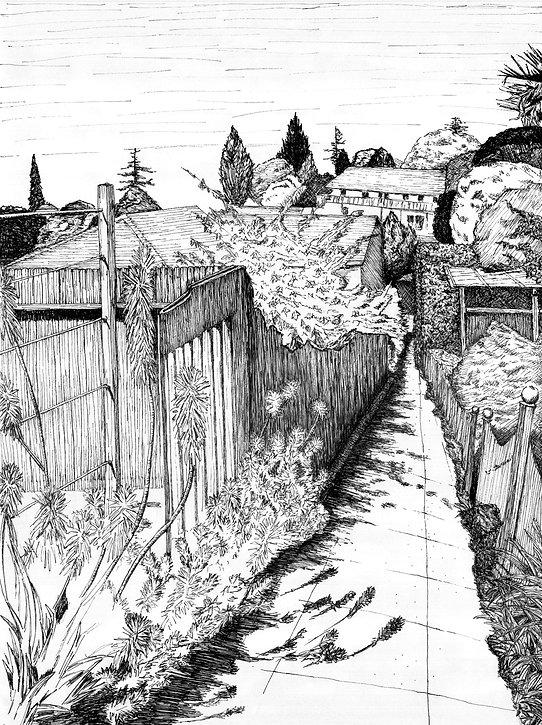 pen and ink illustration 2.jpg