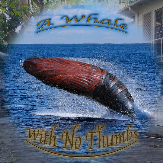 A Whale With No Thumbs