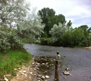 Fly fishing in the Miracle Mile in Colorado.