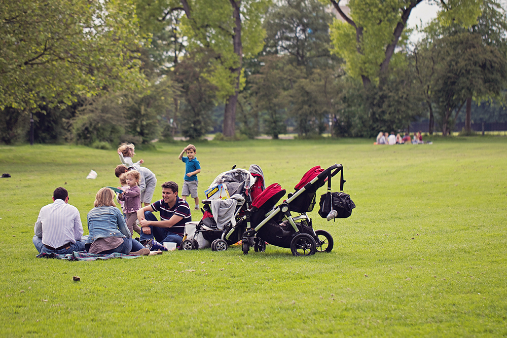 2. Set up a summer picnic