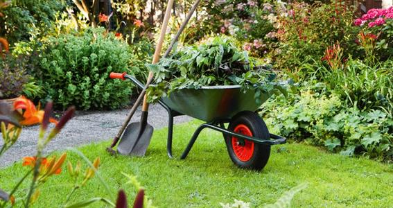 gardening-group.png