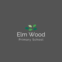 Elm Wood - colour