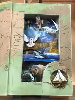Altered Book Entry