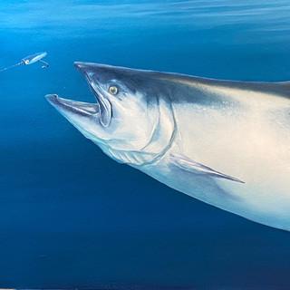 King Salmon After Plug