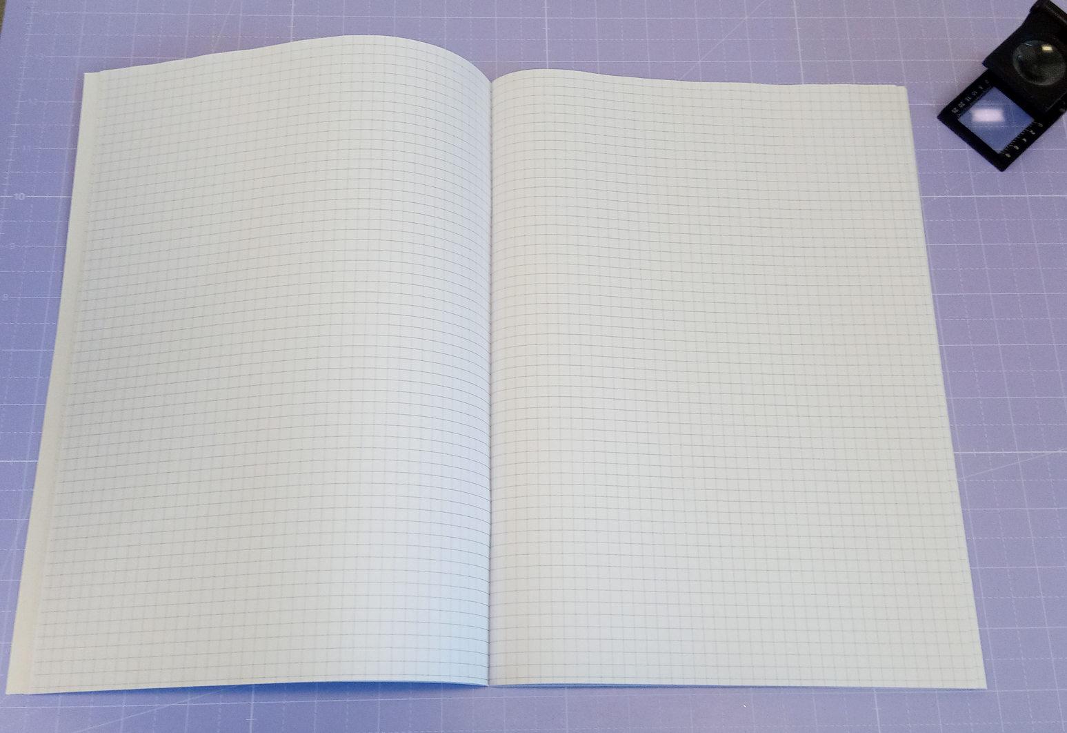 Particolare dell'interno del quaderno
