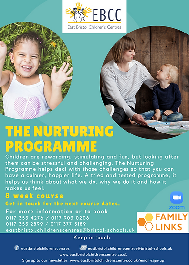 The Nurturing Programme (1).png