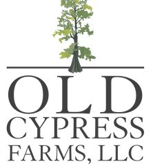 Old Cypress Farms