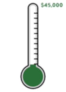 goal thermometer copy.png