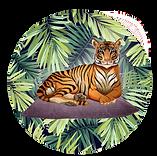 Lihi_Tigress_small.png