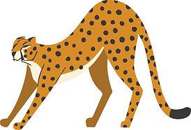 leopard%20streching_edited.jpg