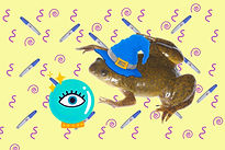 frogs_and_pregnancy_tuned-min_edited.jpg