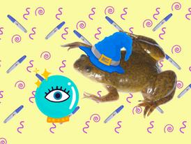 אי-וודאות, צפרדעים ובריאות נשית בנבכי ההיסטוריה