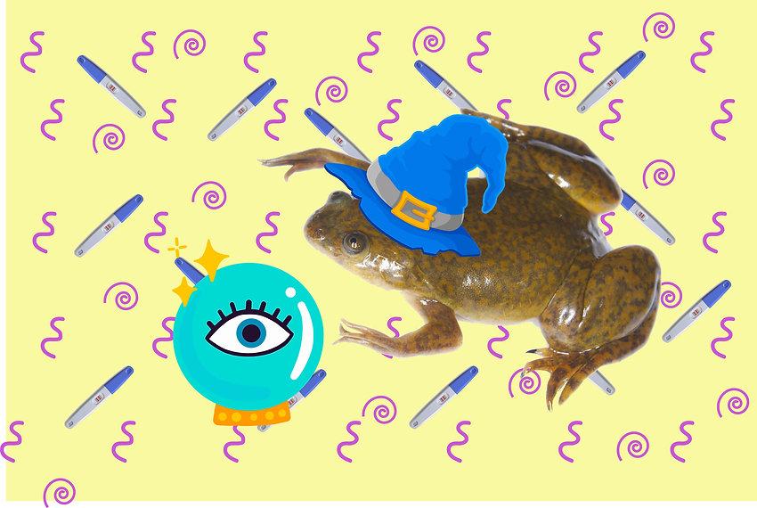 frogs_and_pregnancy_tests צפרדעים ובדיקות הריון