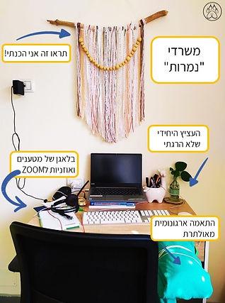 nemerot_office.jpg