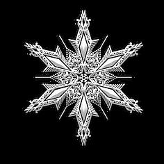 —Pngtree—christmas snowflake_3687223.png