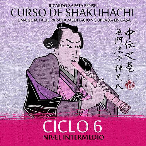 Curso de Shakuhachi Ciclo 6