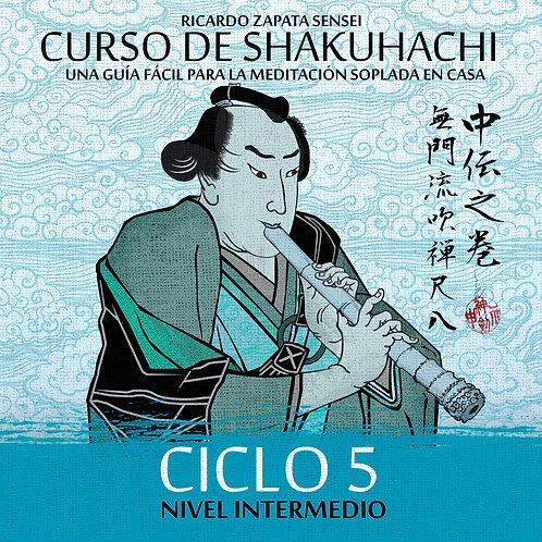 Curso de Shakuhachi Ciclo 5
