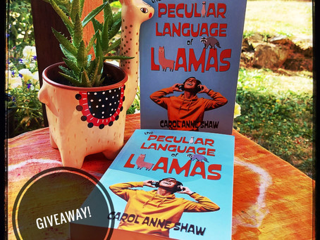 A BOOK GIVEAWAY AND A SNEAK PEEK AT BOOK #2