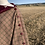 Thumbnail: The Ruby