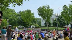 White House Sitting
