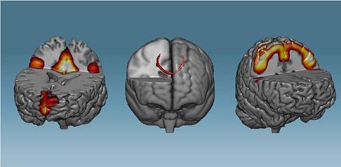 treine_e_transforme_seu_cérebro.jpg