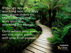 IBW Find Your Path