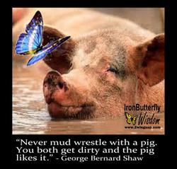 IBW Pig Mud Wrestle