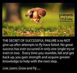 IBW Successful Failure