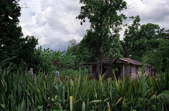 La Finca, Calimete, Cuba