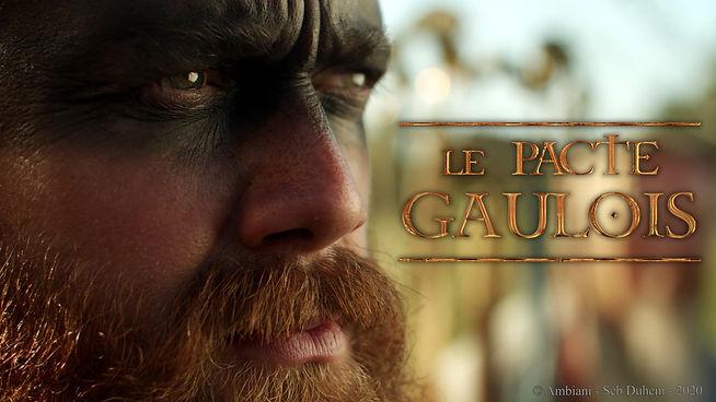 pacte_gaulois_seb_duhem_com6.jpg