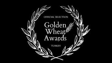 golden_wheat_pacte_gaulois_seb_duhem_000