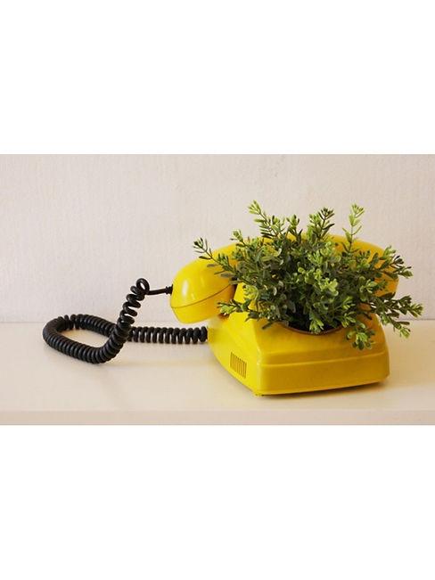 plantphone.jpg