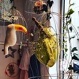 vitrine cage dorée Ernest est céleste, visual merchandising à Nantes
