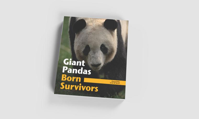 book_cover_panda.jpg