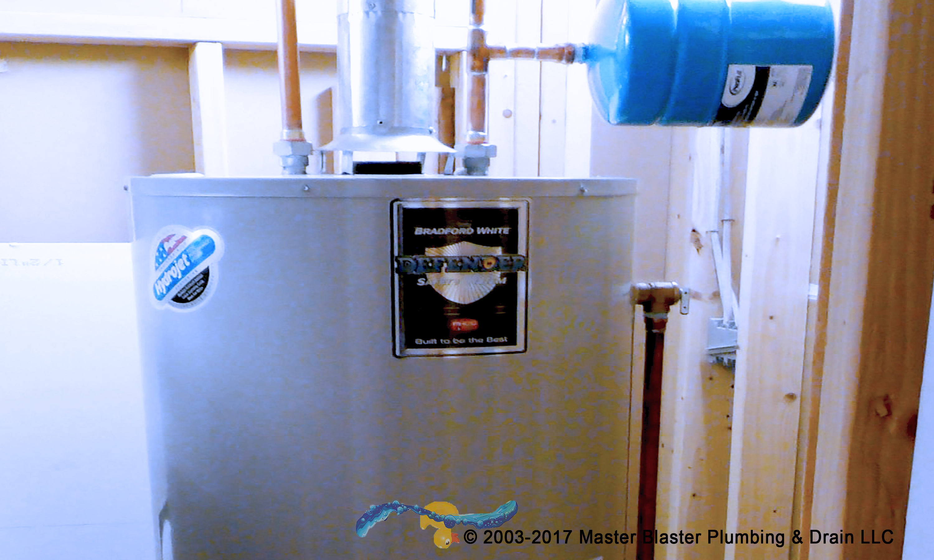 40/50gl Tank Water Heater